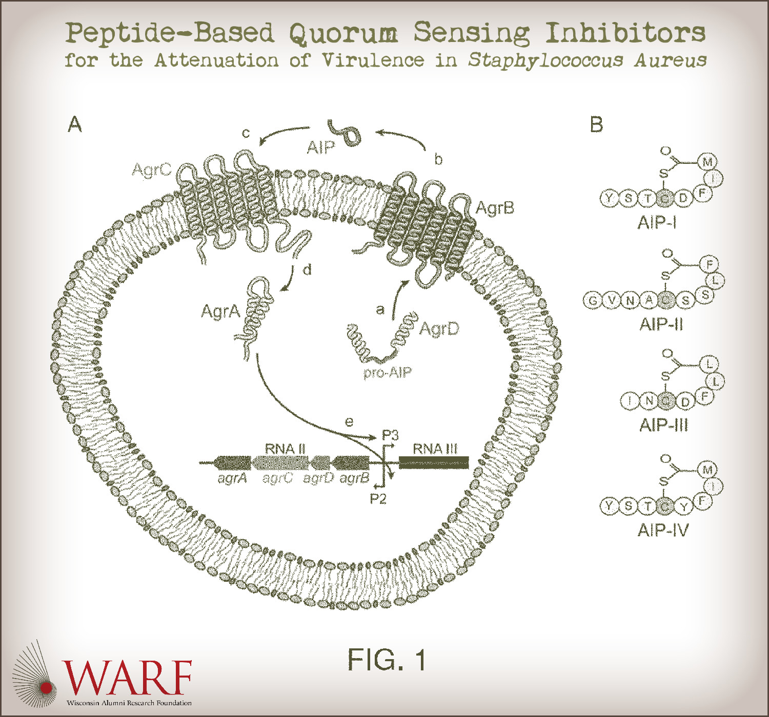 patent drawing of circular arrangement of dna rna etc and title all