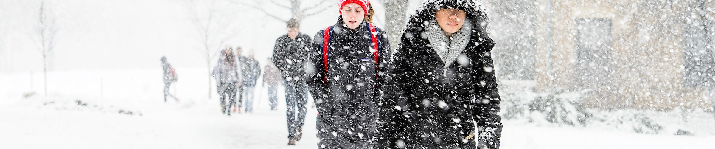 As a fresh coat of snow falls, students make their way to class up Bascom Hill at the University of Wisconsin-Madison during winter on Jan. 25, 2017. (Photo by Bryce Richter / UW-Madison)